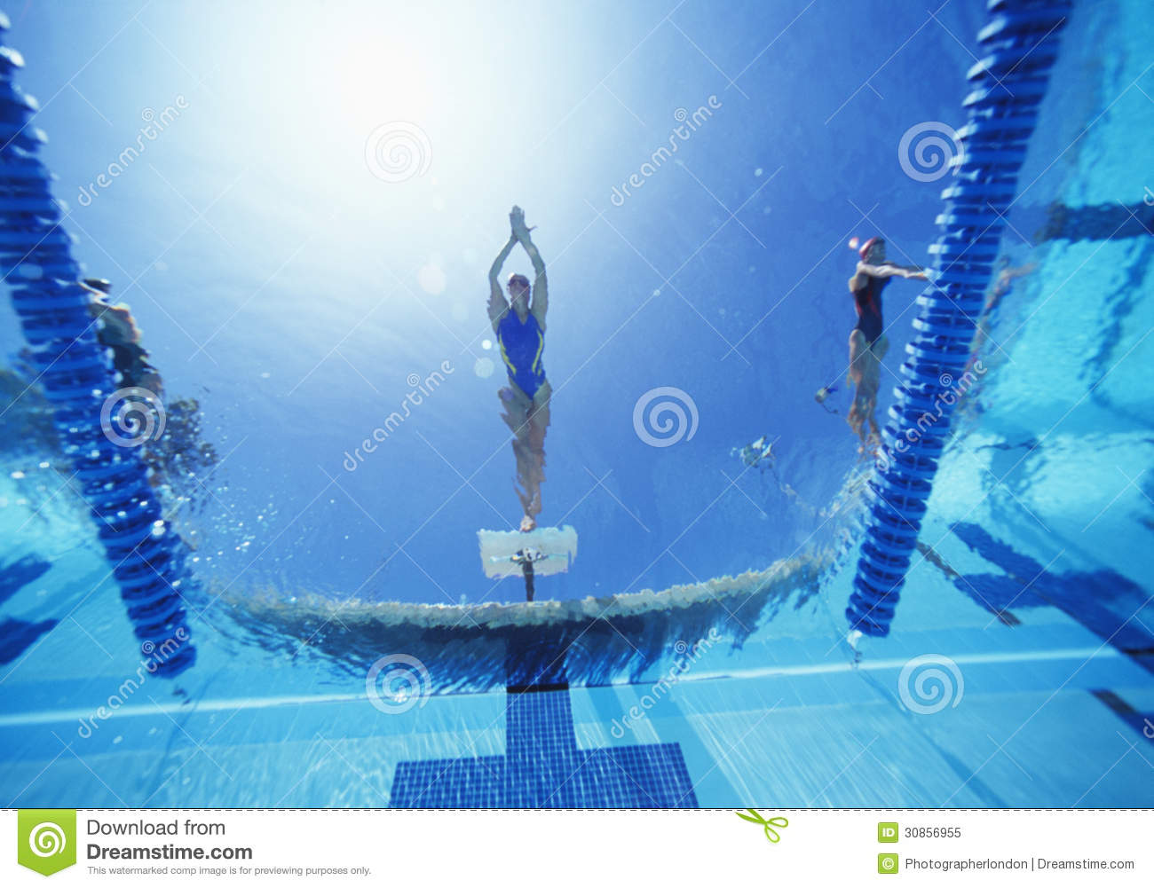 View Of Female Swimmer Diving In Swimming Pool Royalty Free Stock Photo Image 30856955