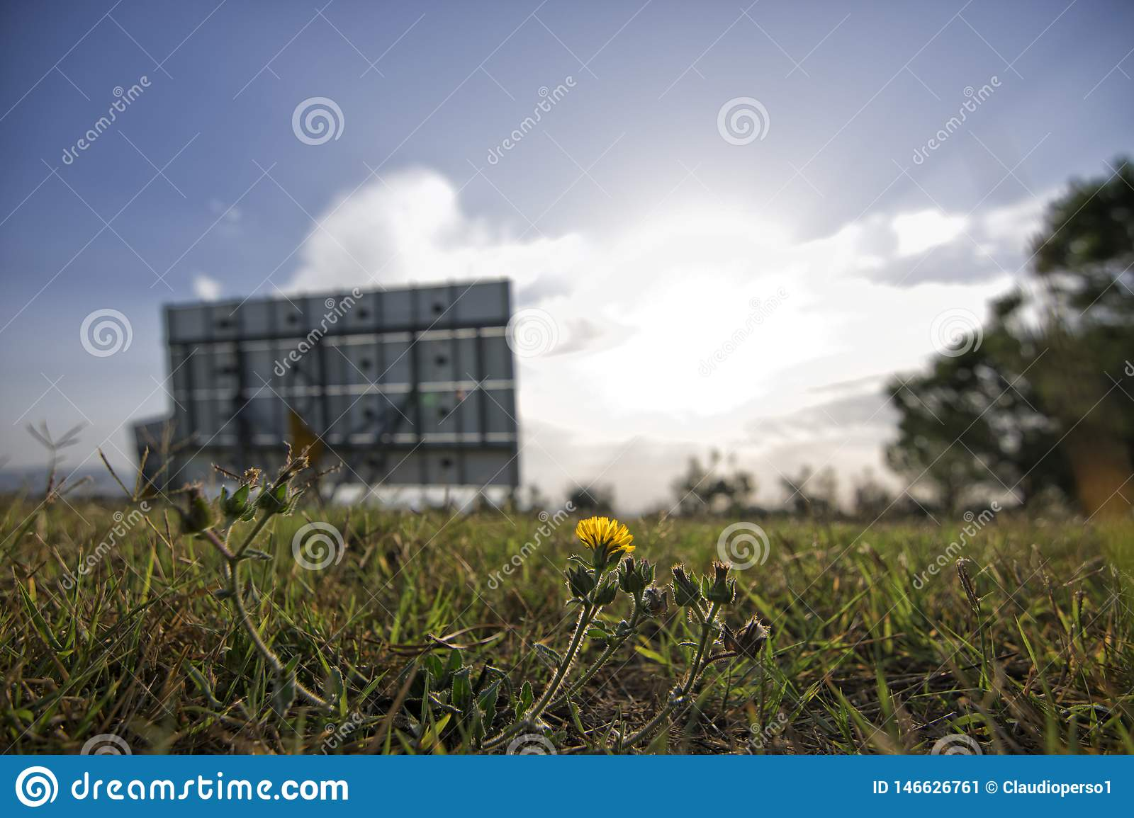 A field with flowers and a green energy solar panel