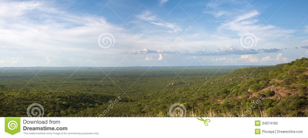 View Of The Forest, The Horizon Is Angola Stock Photo ...