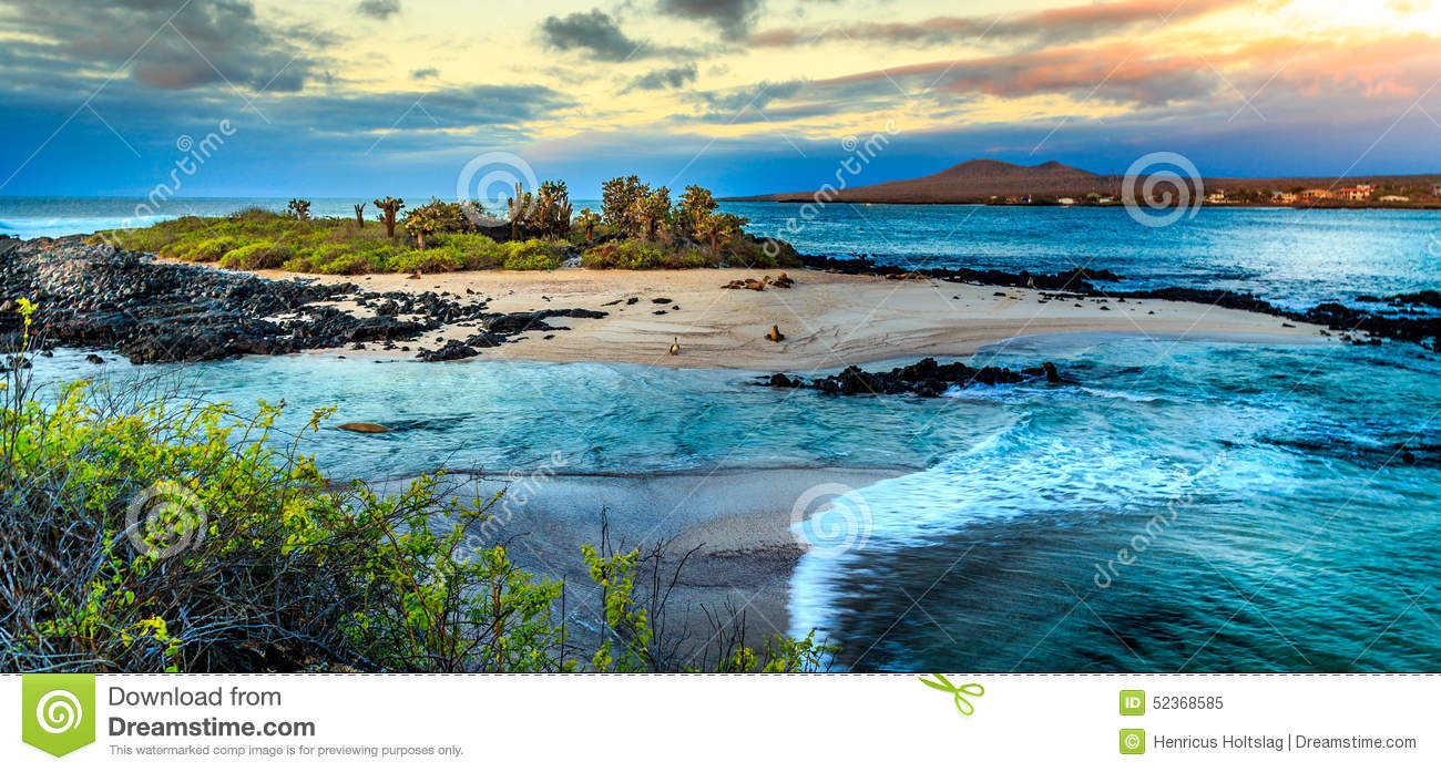 View of the Galapagos