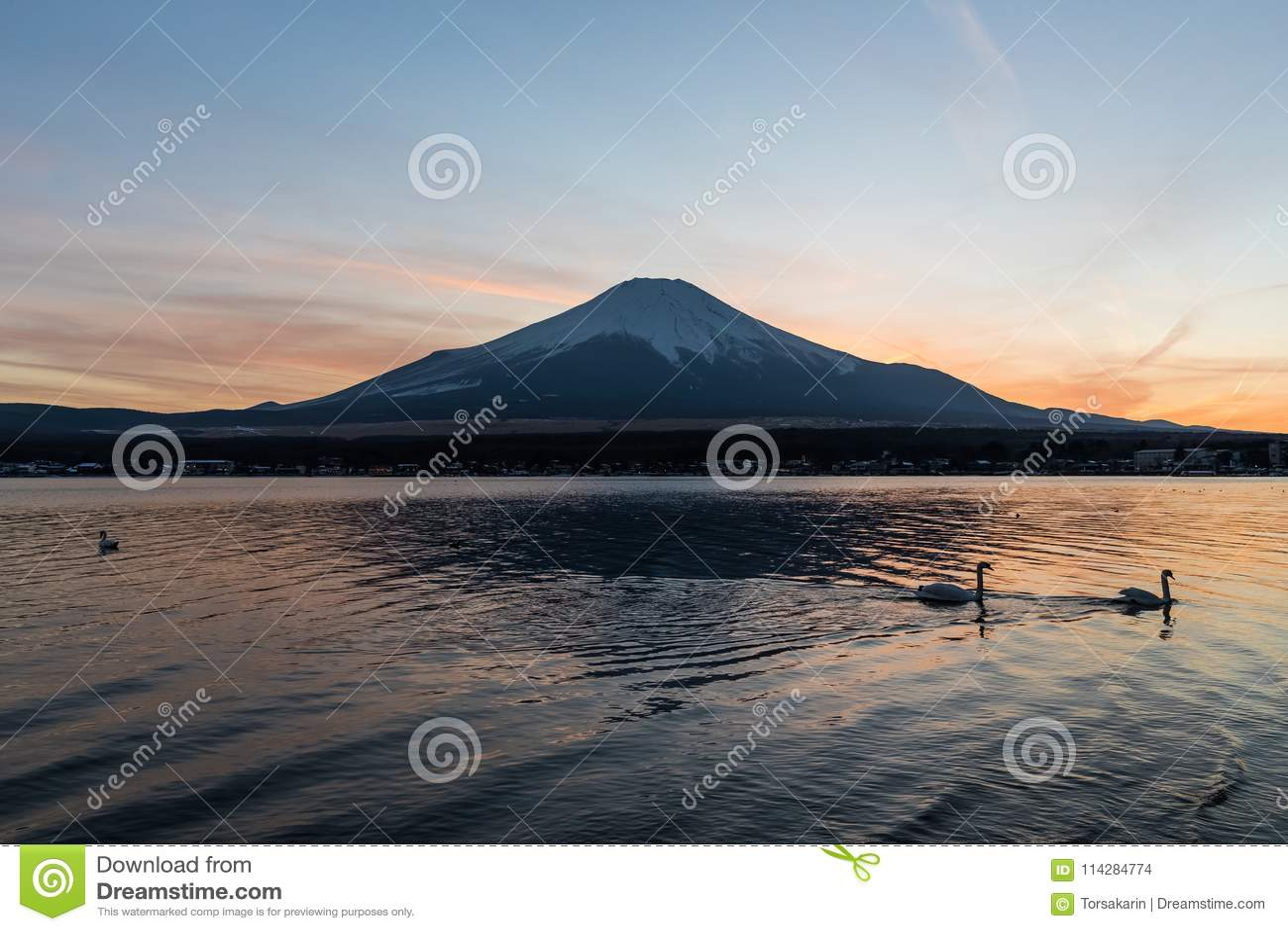 View of Mount Fuji and Lake Yamanakako