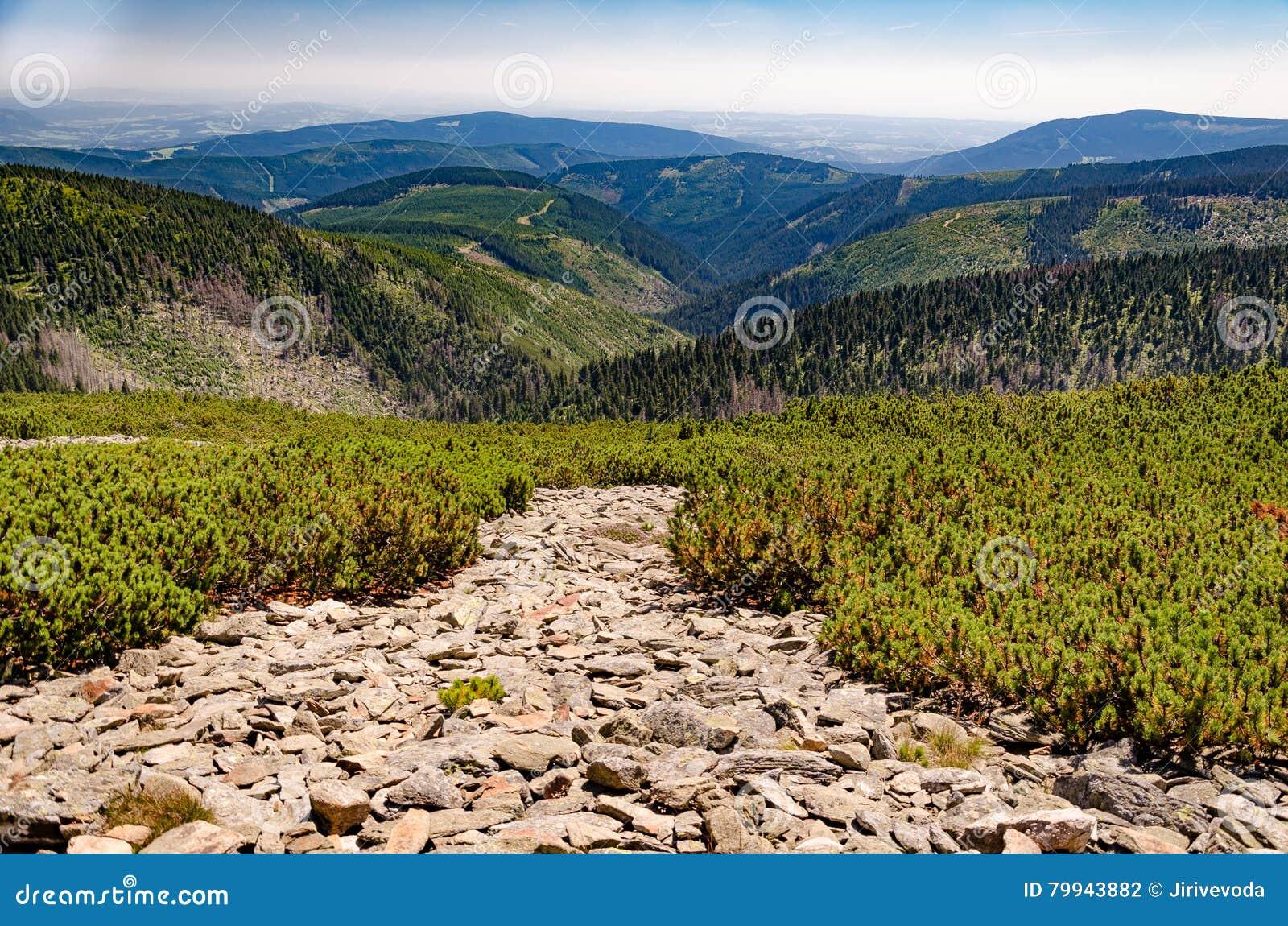 Planter Dans Un Talus view of the mountain ridges of talus fields stock photo