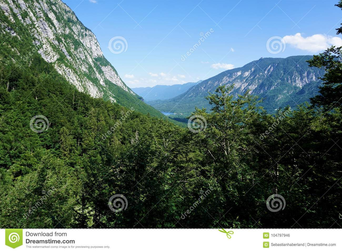 View over forest to Vogel mountain and Lake Bohinj