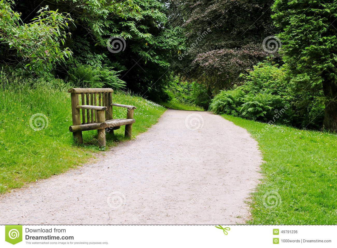 View Of A Path And Wooden Bench On Forest Trail Stock ...