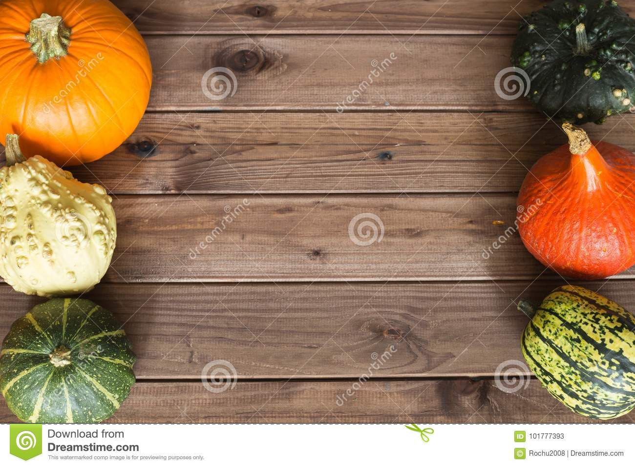 Pumpkins Different Types Good For Eat And Decorative Stock Image