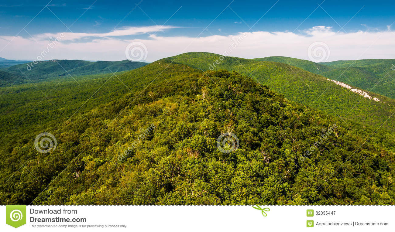 View of the Ridge and Valley Appalachians from Big Schloss, West Virginia