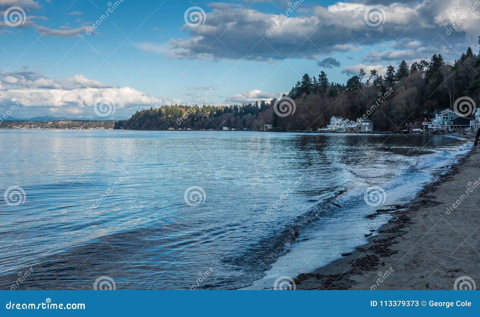 Dash Point Shoreline Landscape