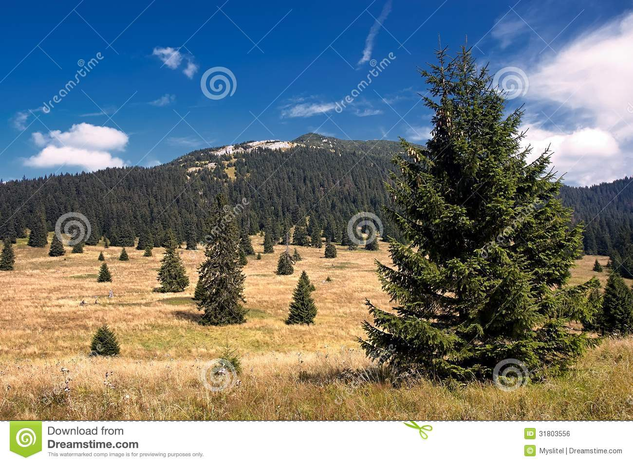 View Of The Slovak Mountains Royalty Free Stock Image