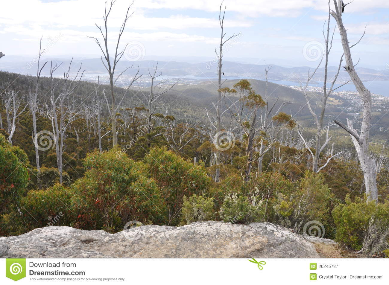 View from sphinx rock on mt wellington hobart royalty for Landscaping rocks wellington