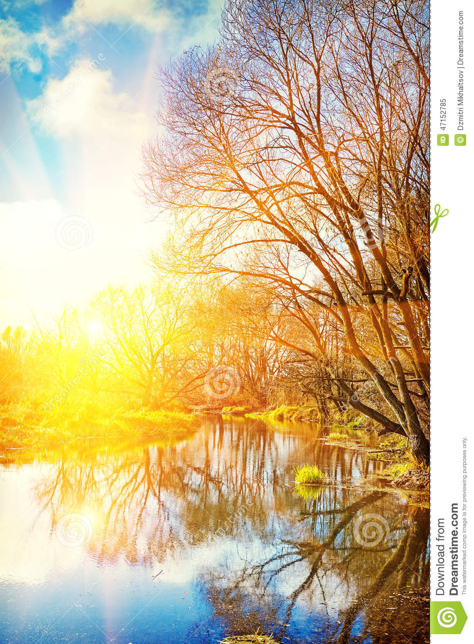view on sunrise on small river in leafless forest instagram stile