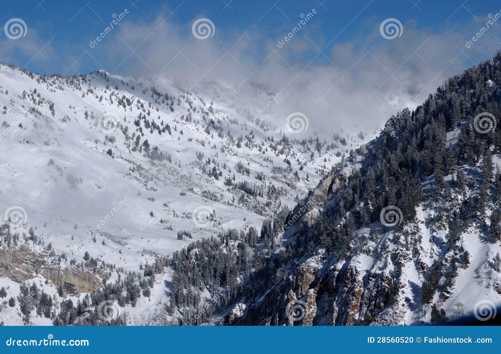 Utah skis coupon