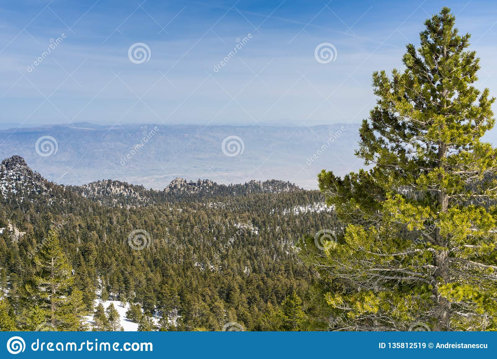View Towards The Palm Springs Aerial Tramway On The Ridge