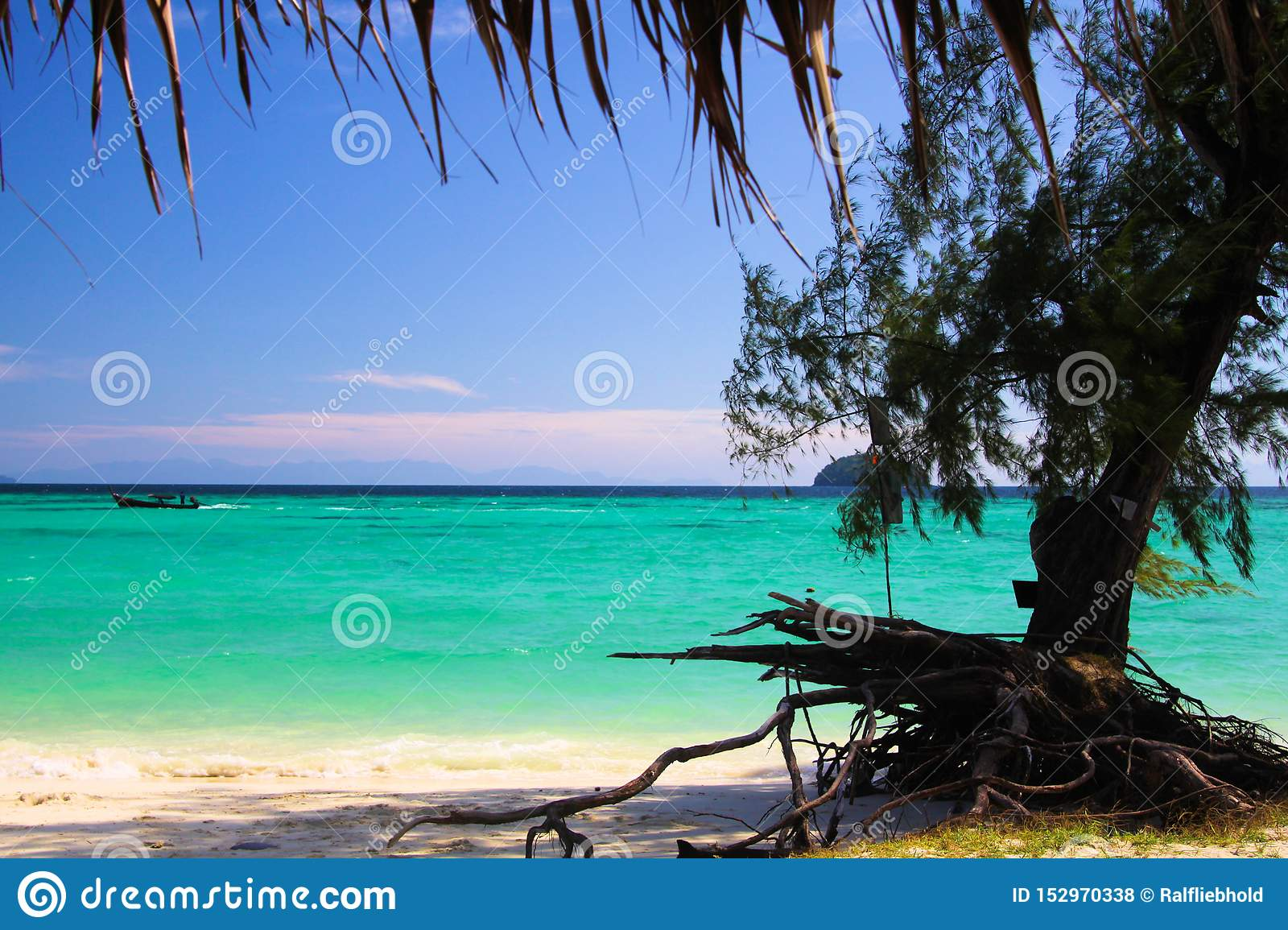 View on turquoise water with crooked tree root and white sand beach on Ko Lipe, Thailand