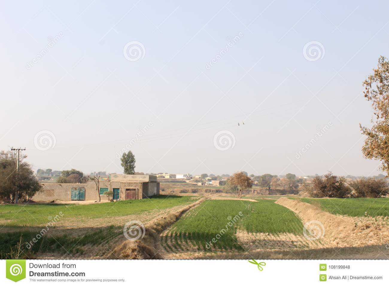 A view of village life and fields