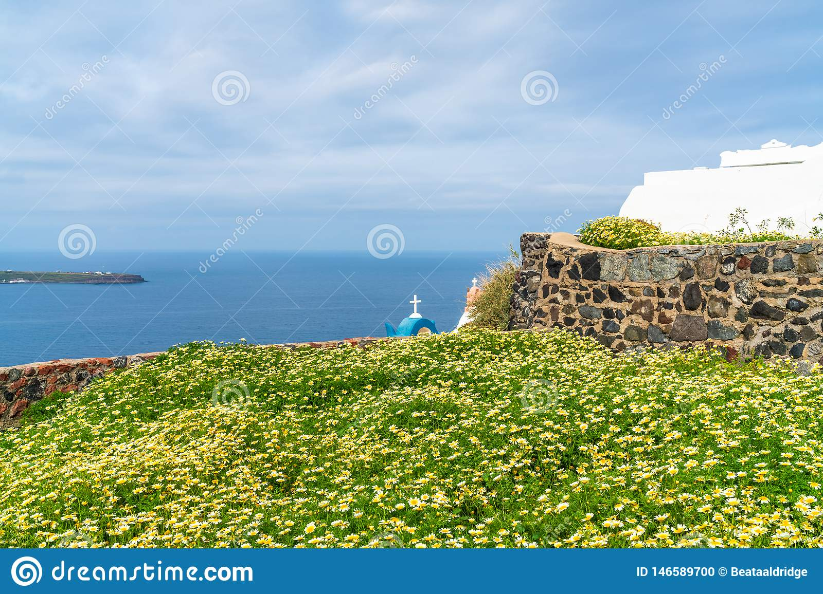 View of wild flowers and Aegean Sea in Oia, Santorini