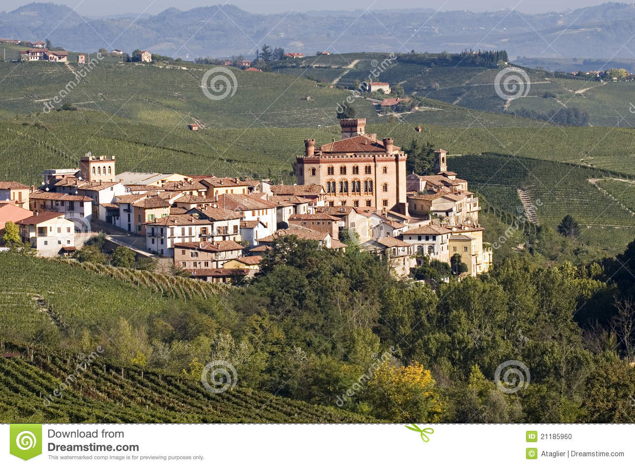 Views of the Castle of Barolo