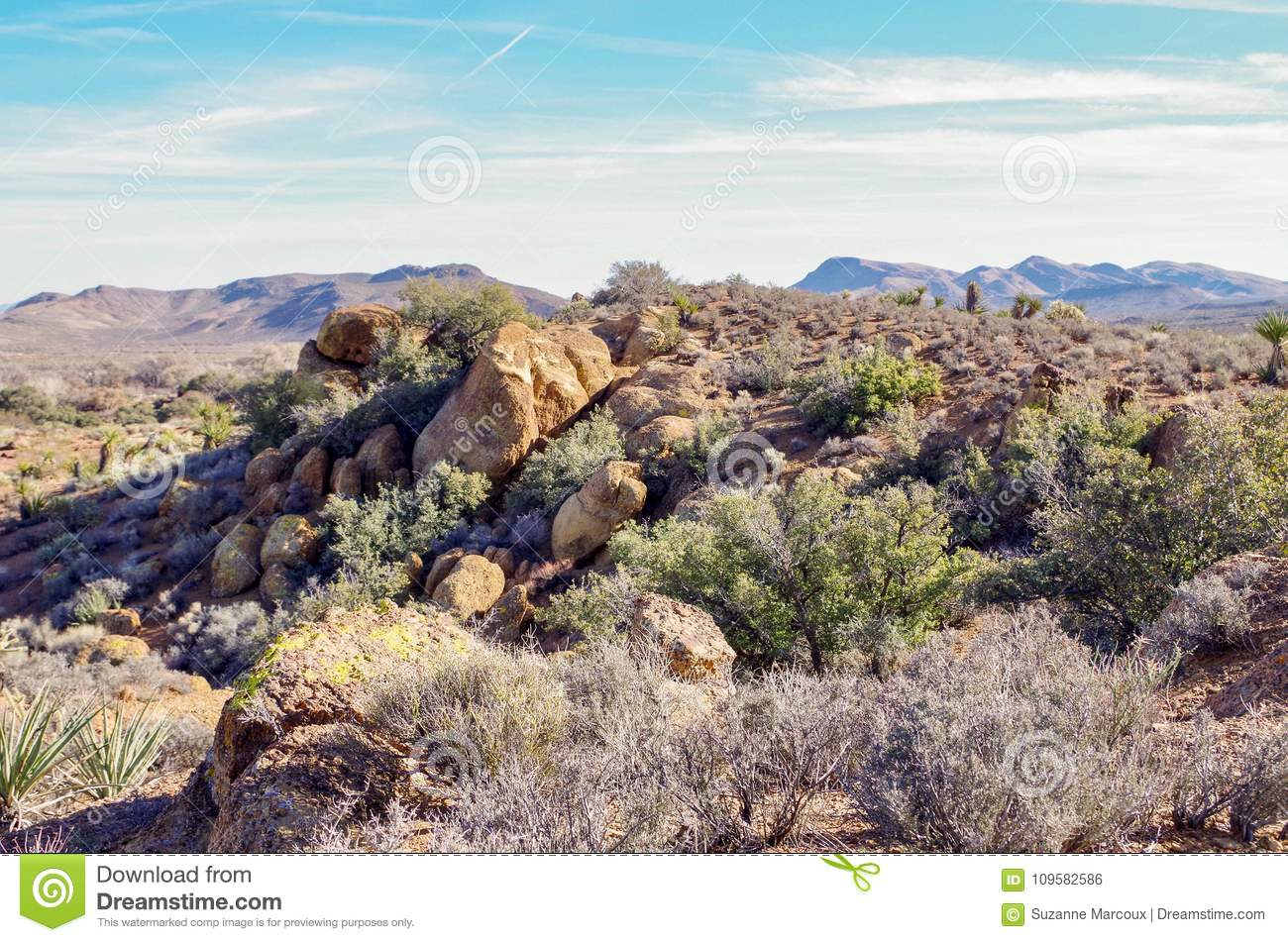 Spring Mountain Ranch State Park Nevada Usa Stock Photo Image Of