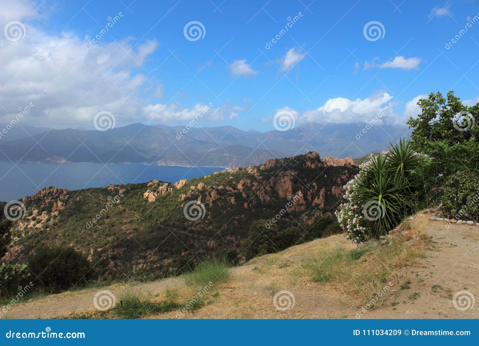 ViewSight der Lorbeere von Korsika Porto