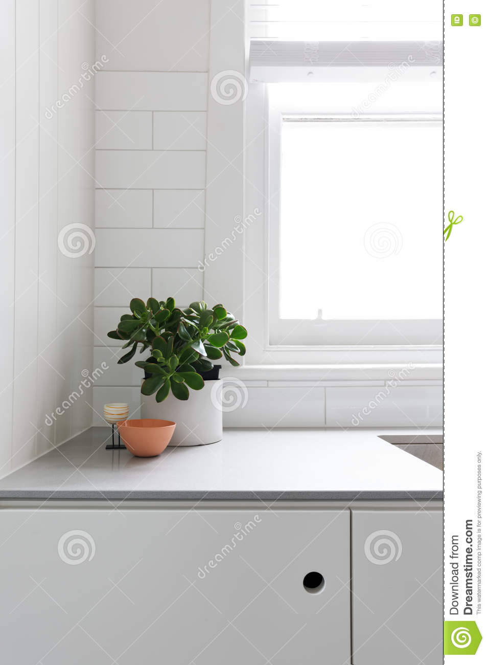 Kitchen Benchtop Vignette Of Pot Plant And Ornaments On Kitchen Benchtop Stock