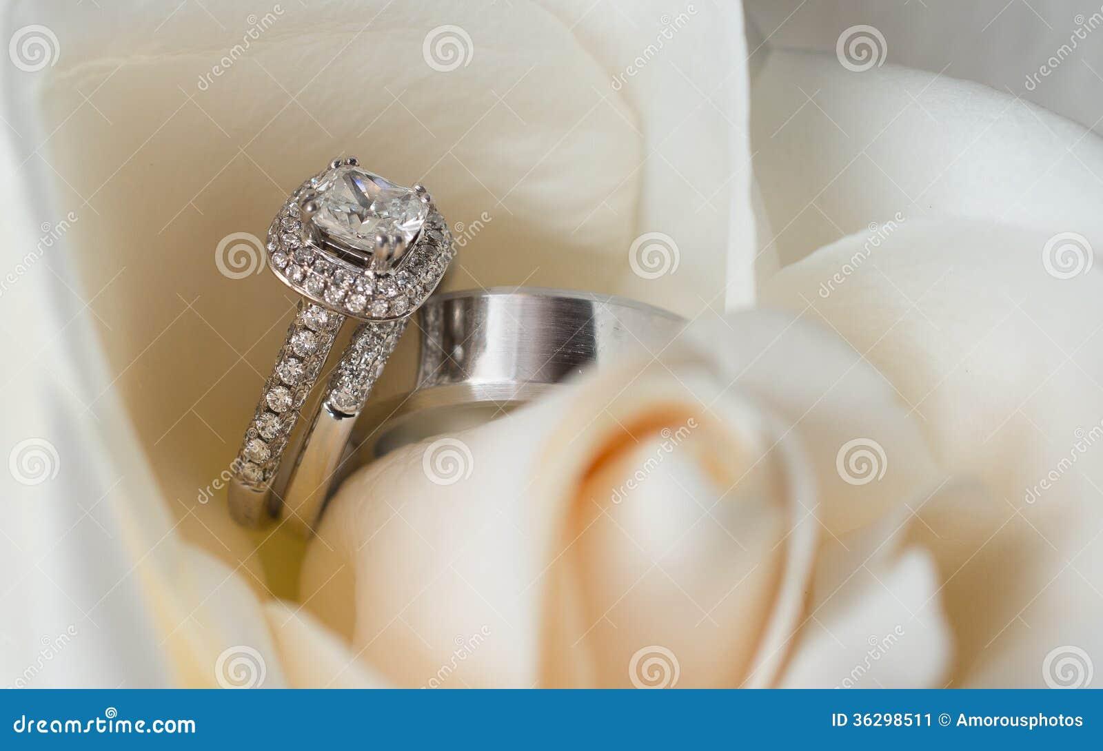 Detaljer av silverbröllop och förlovningsringar som är ordnade i kronbladen  av en vit blomma. d24d3935f35d0