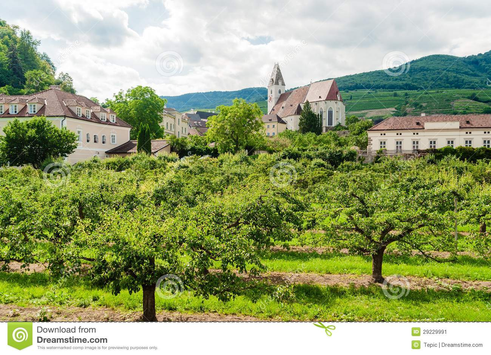 Download Vila cercada por árvores imagem de stock. Imagem de flora - 29229991