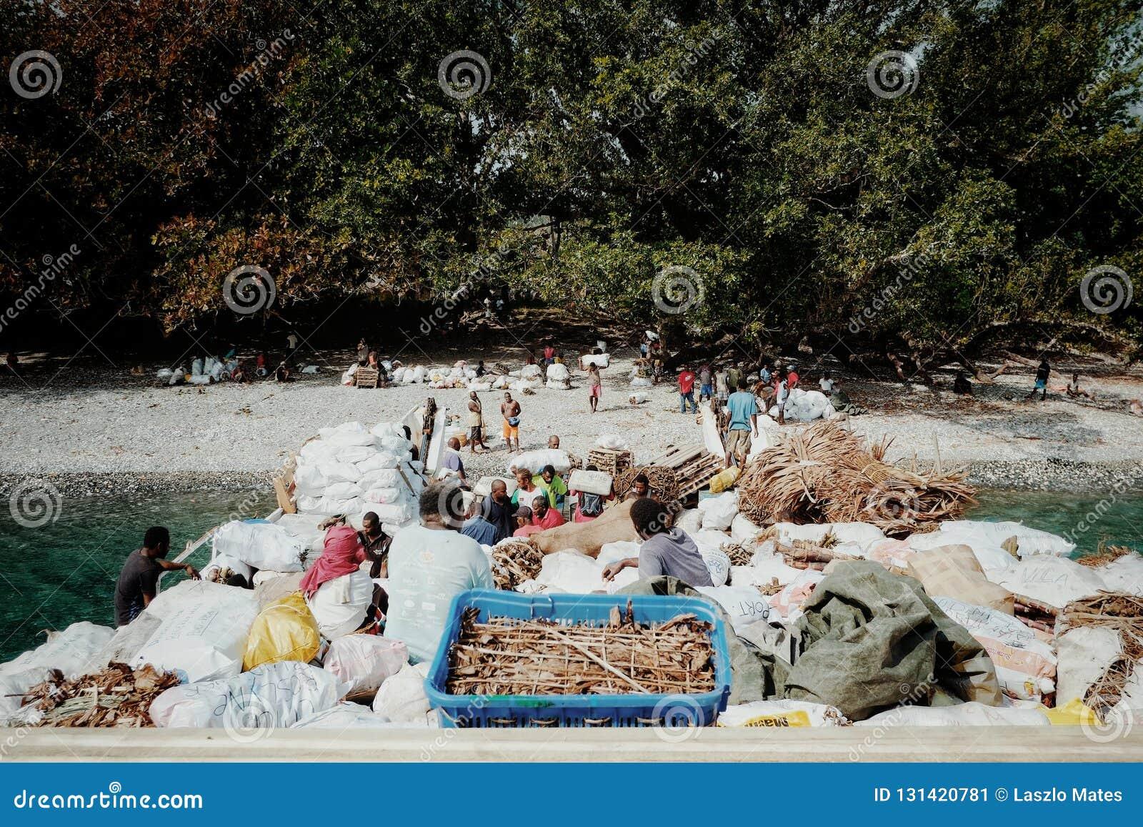 Vila de Melsisi, ilha do domingo de Pentecostes/Vanuatu - 9 DE JULHO DE 2016: bens offloading pequenos do barco de carga aos resi
