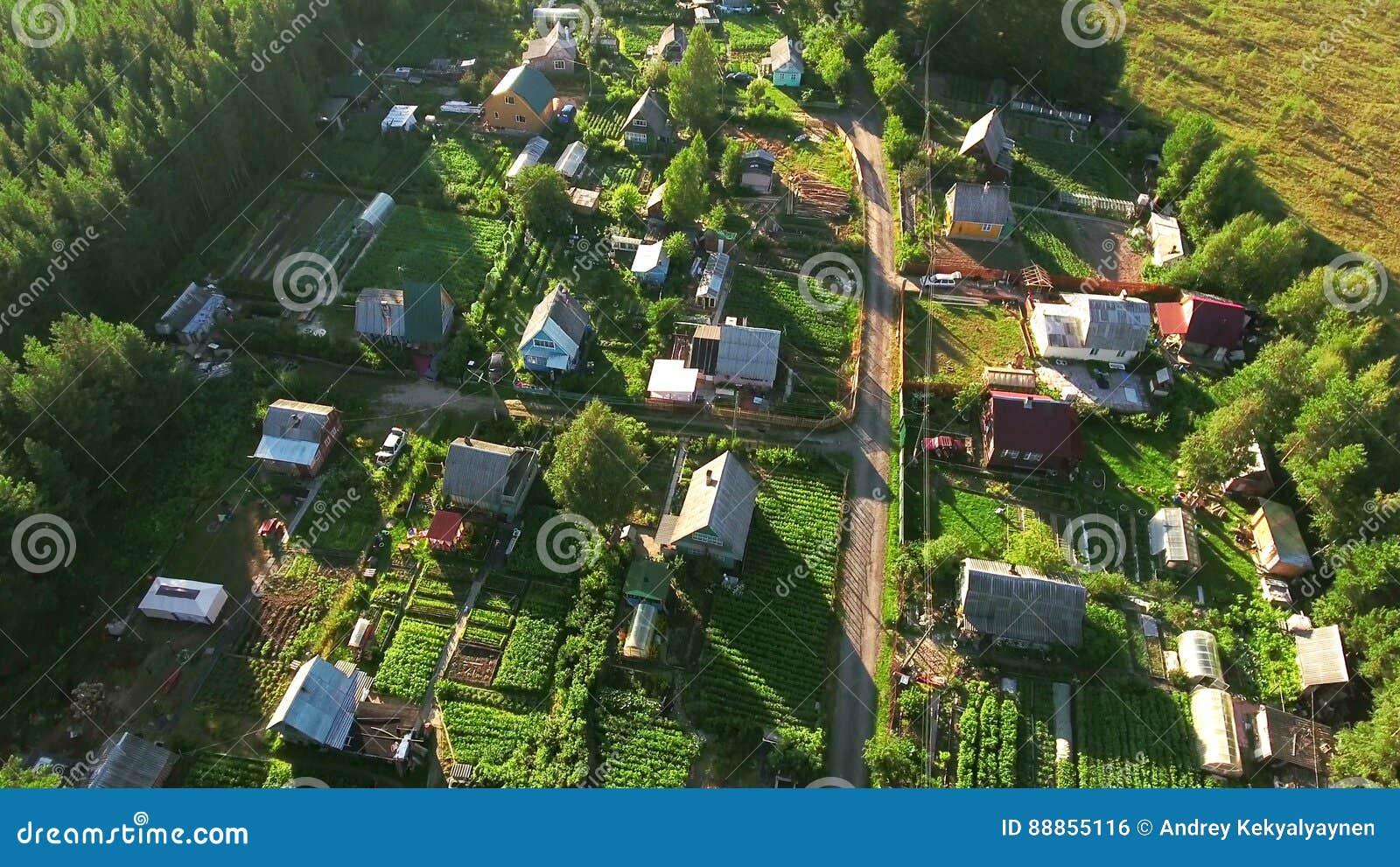 Vila do verão do russo com casas de madeira Voo sobre telhados Florestas sempre-verdes e pântanos de Carélia do norte, Rússia