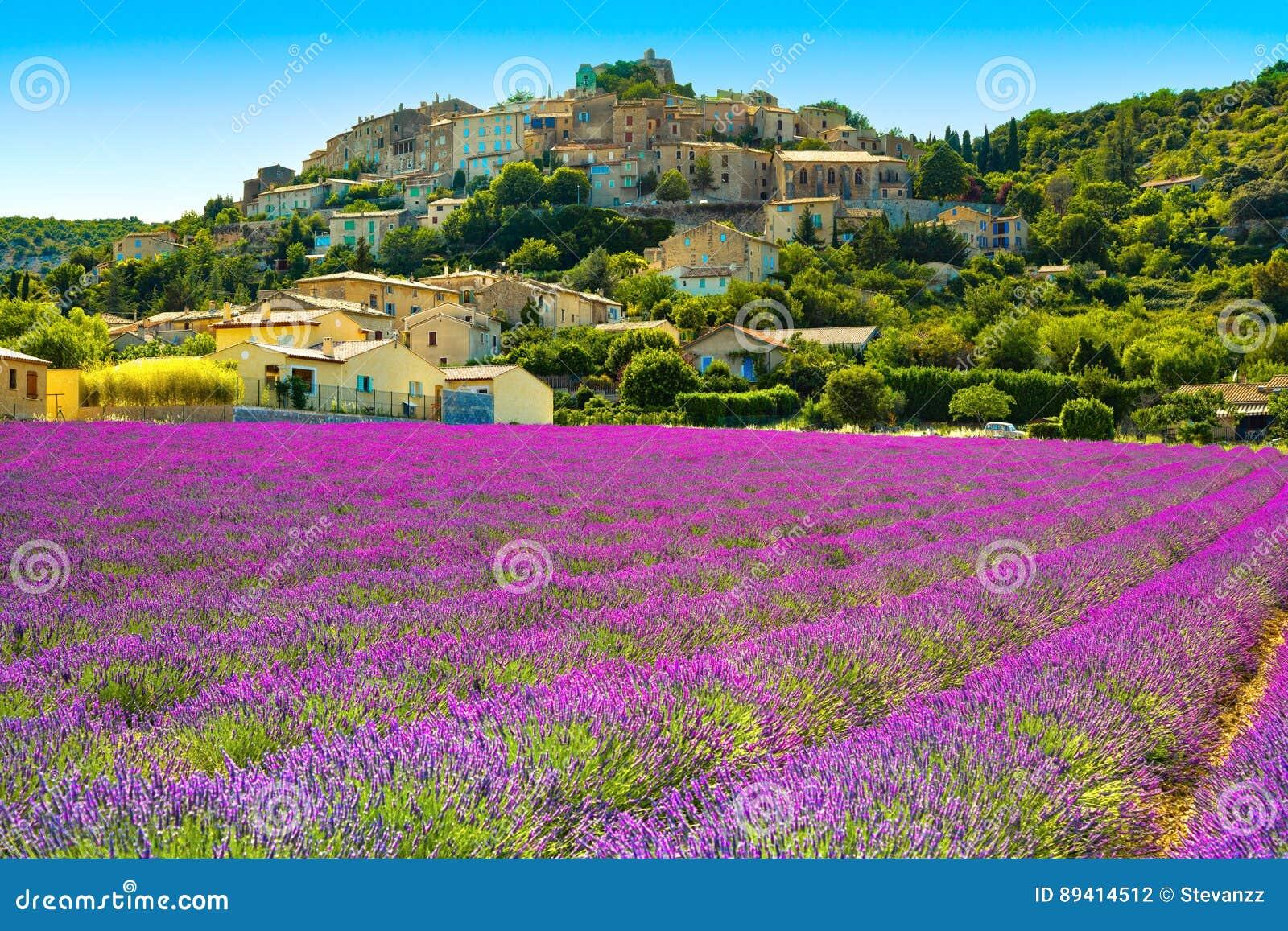 Vila e alfazema de Rotonde do la de Simiane Provence, France