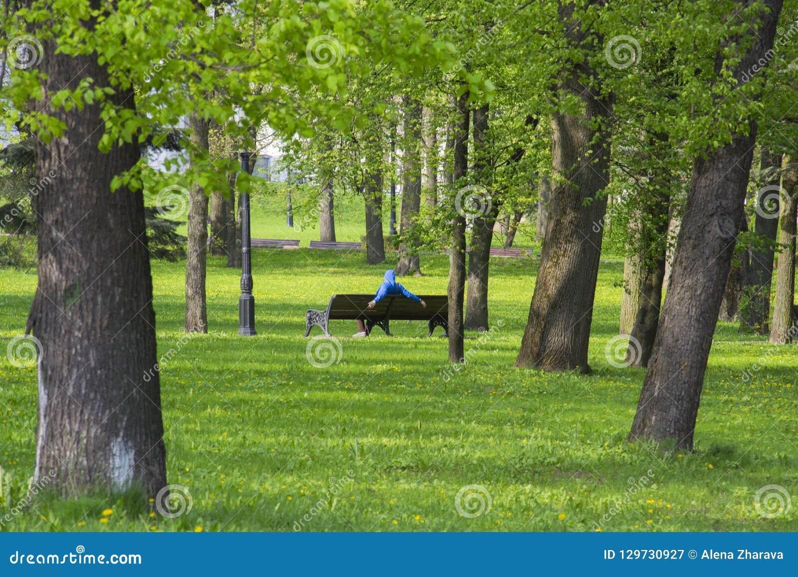 Vila i parkerar på en bänk i Minsk, Vitryssland