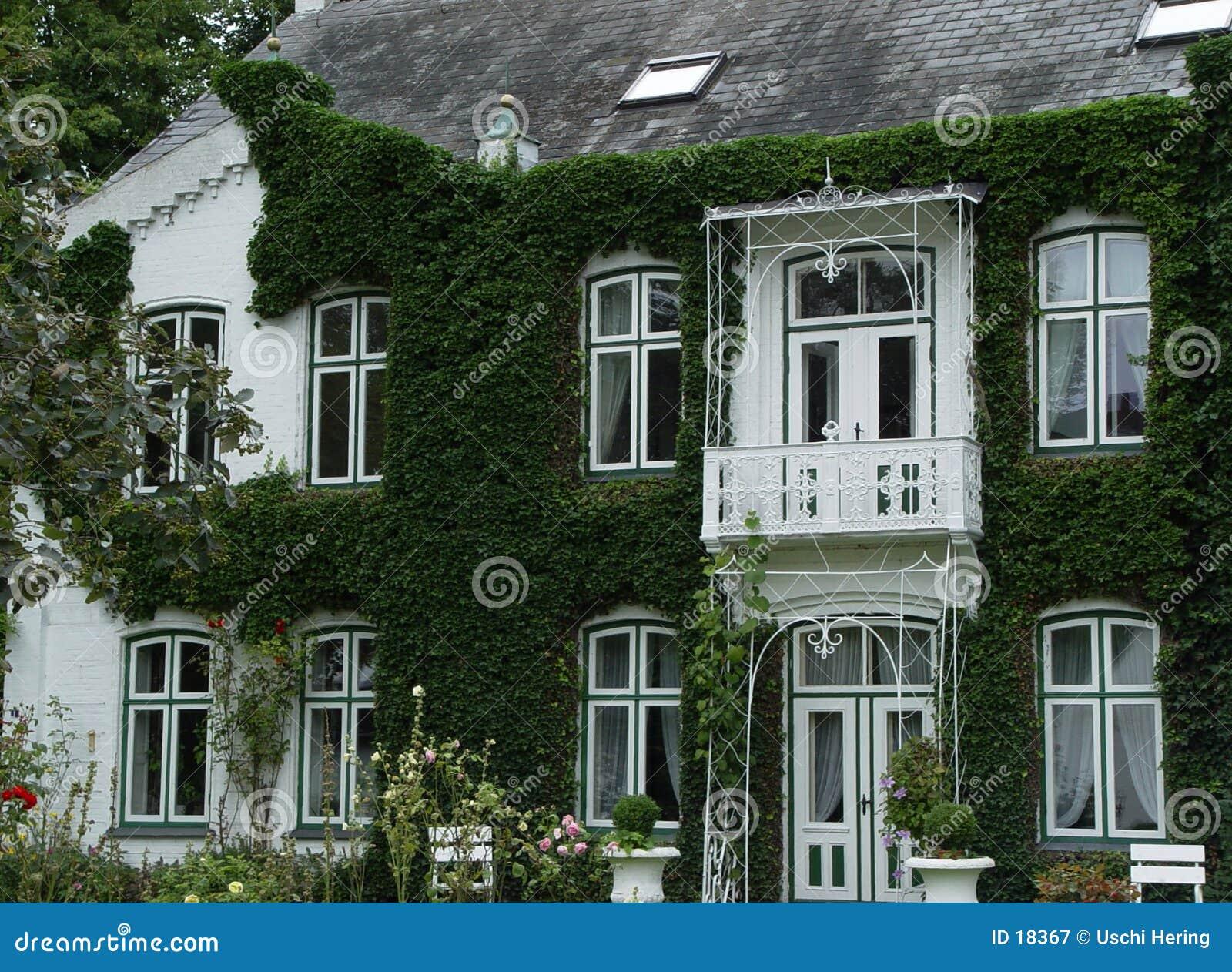 Villa de lierre
