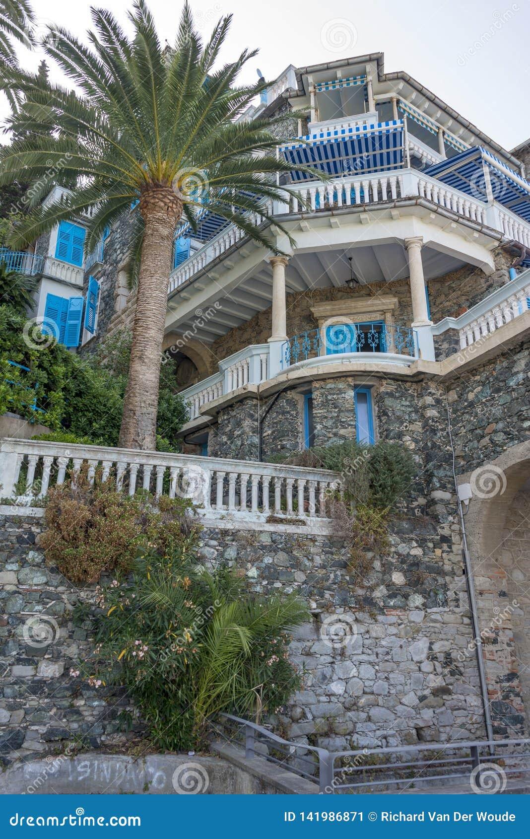 Villa esotica Palmtree