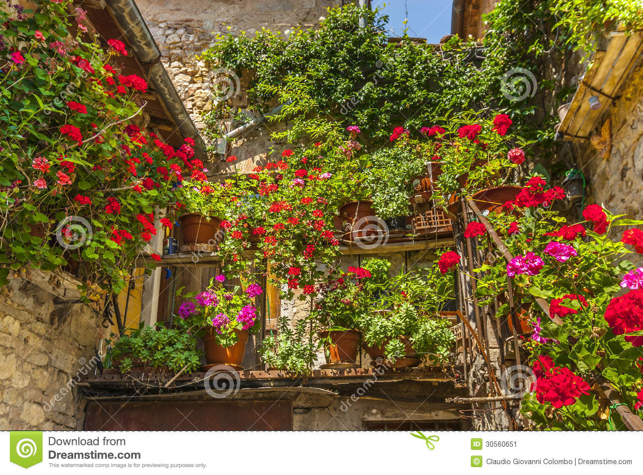 Villa A Sesta Chianti House With Plants And Flowers Stock Image Image