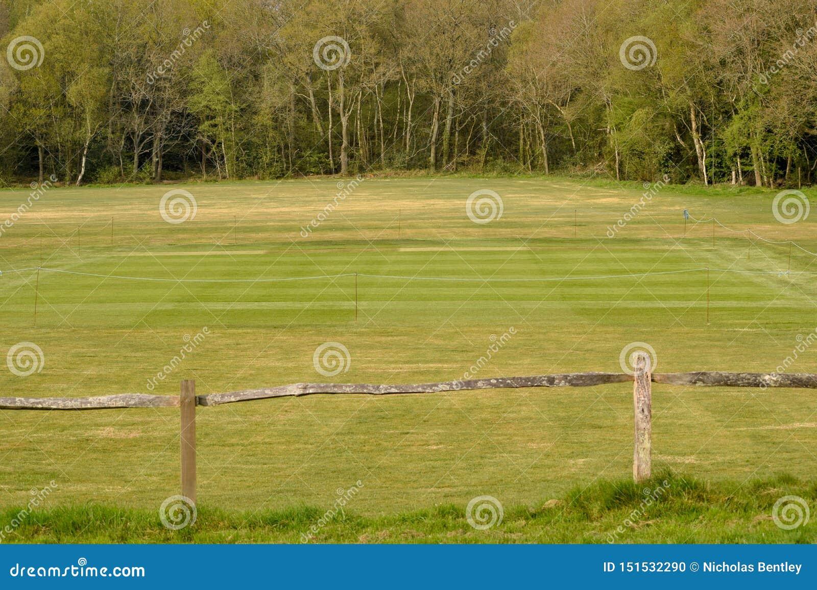 Village Cricket Green, Henfield Common