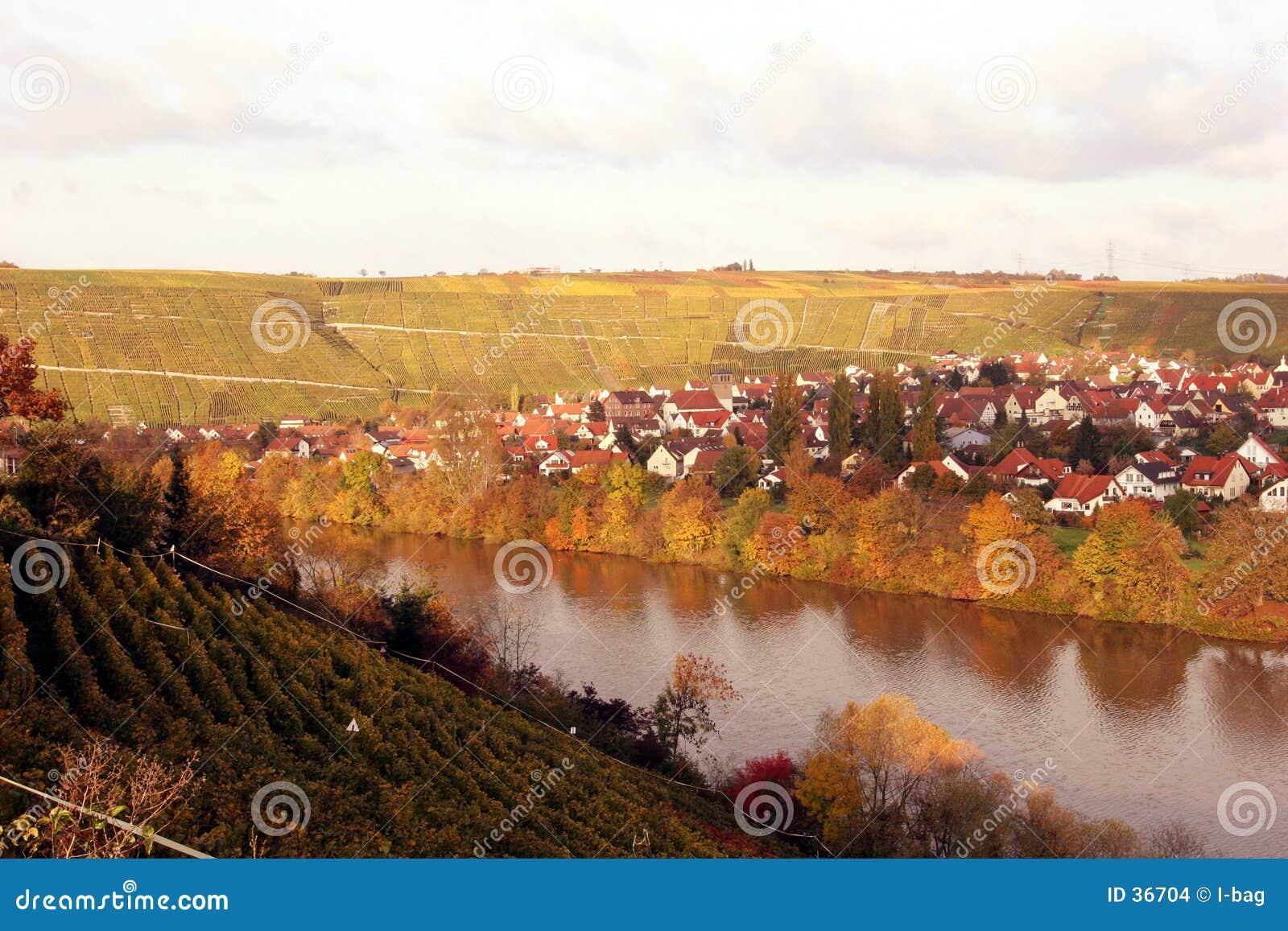 Village de vigne d automne