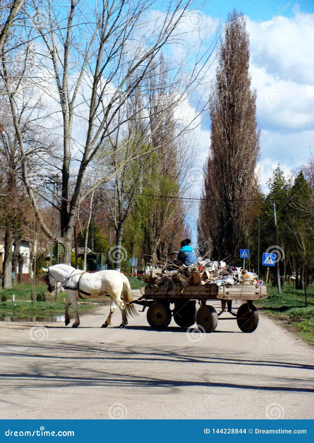 Village Debeljaca, Voïvodine, Serbie Chariot gitan au centre du village Cheval blanc Chariot complètement de divers matériel