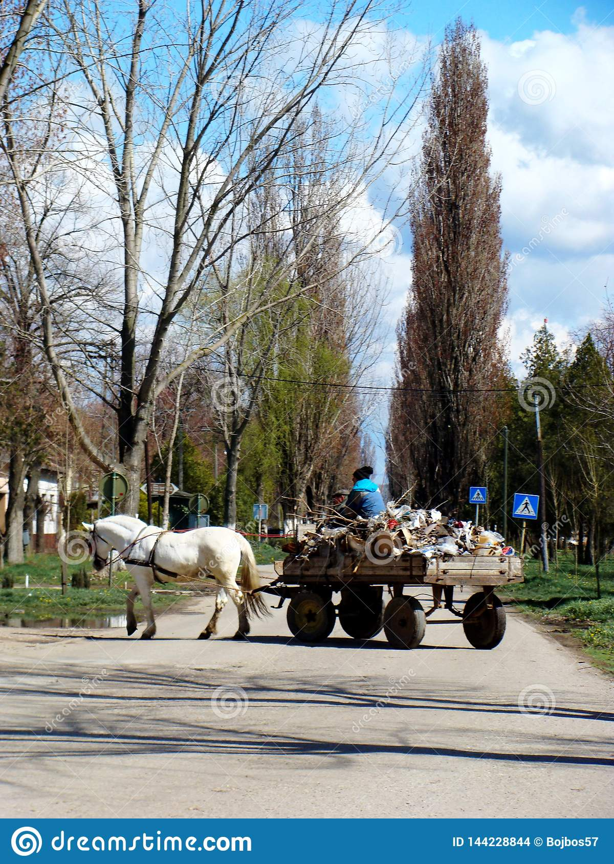 Village Debeljaca, Vojvodina, Serbia. Gipsy wagon in the center of the village. White horse. Wagon full of various material.