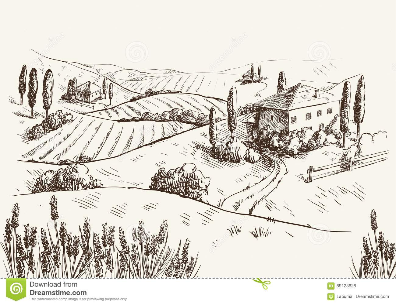 Village Houses And Farmland Stock Vector - Illustration of ranch ... for Farmland Sketch  70ref