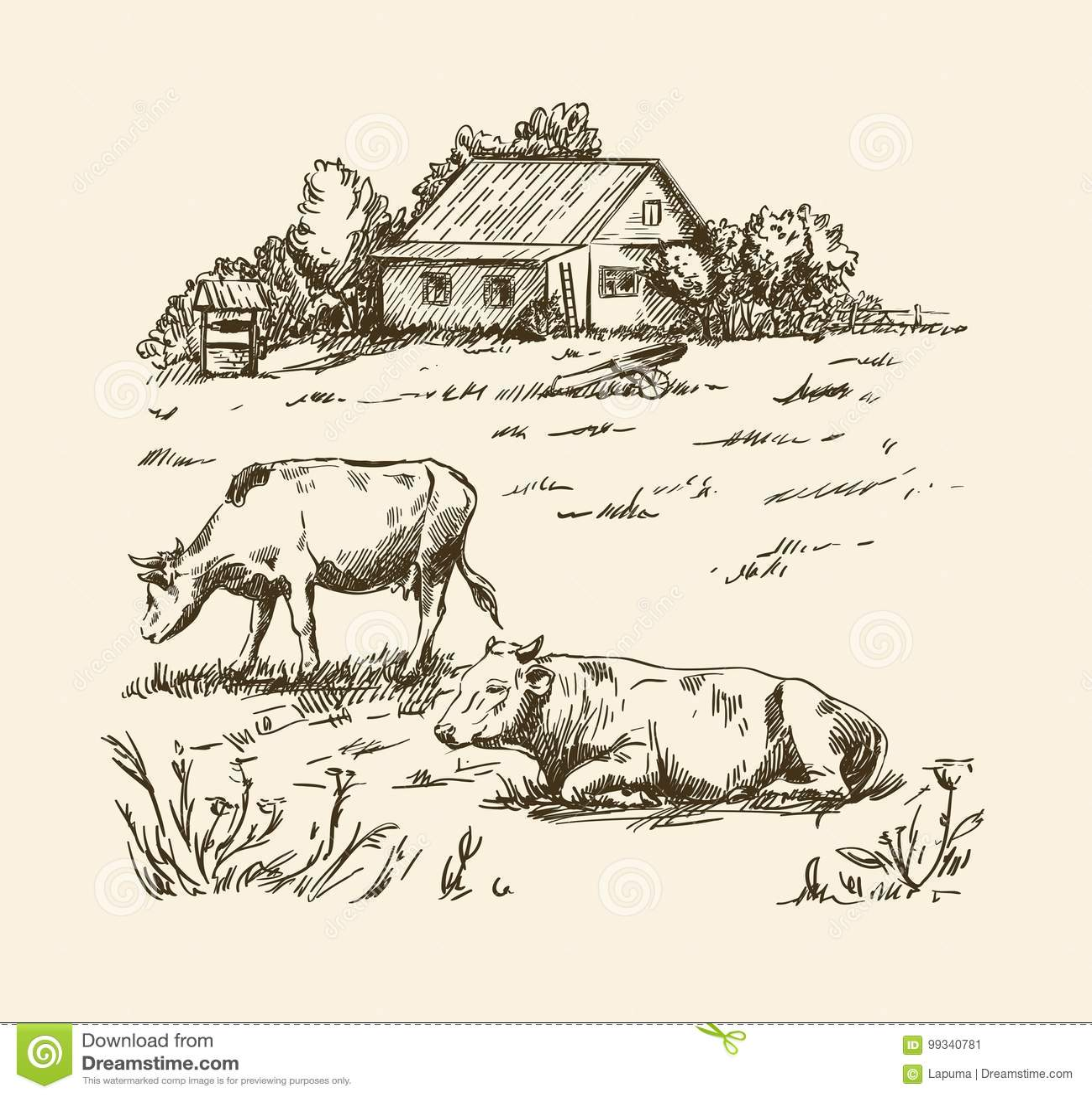 Village Houses And Farmland Stock Vector - Illustration of animal ... for Farmland Sketch  131fsj