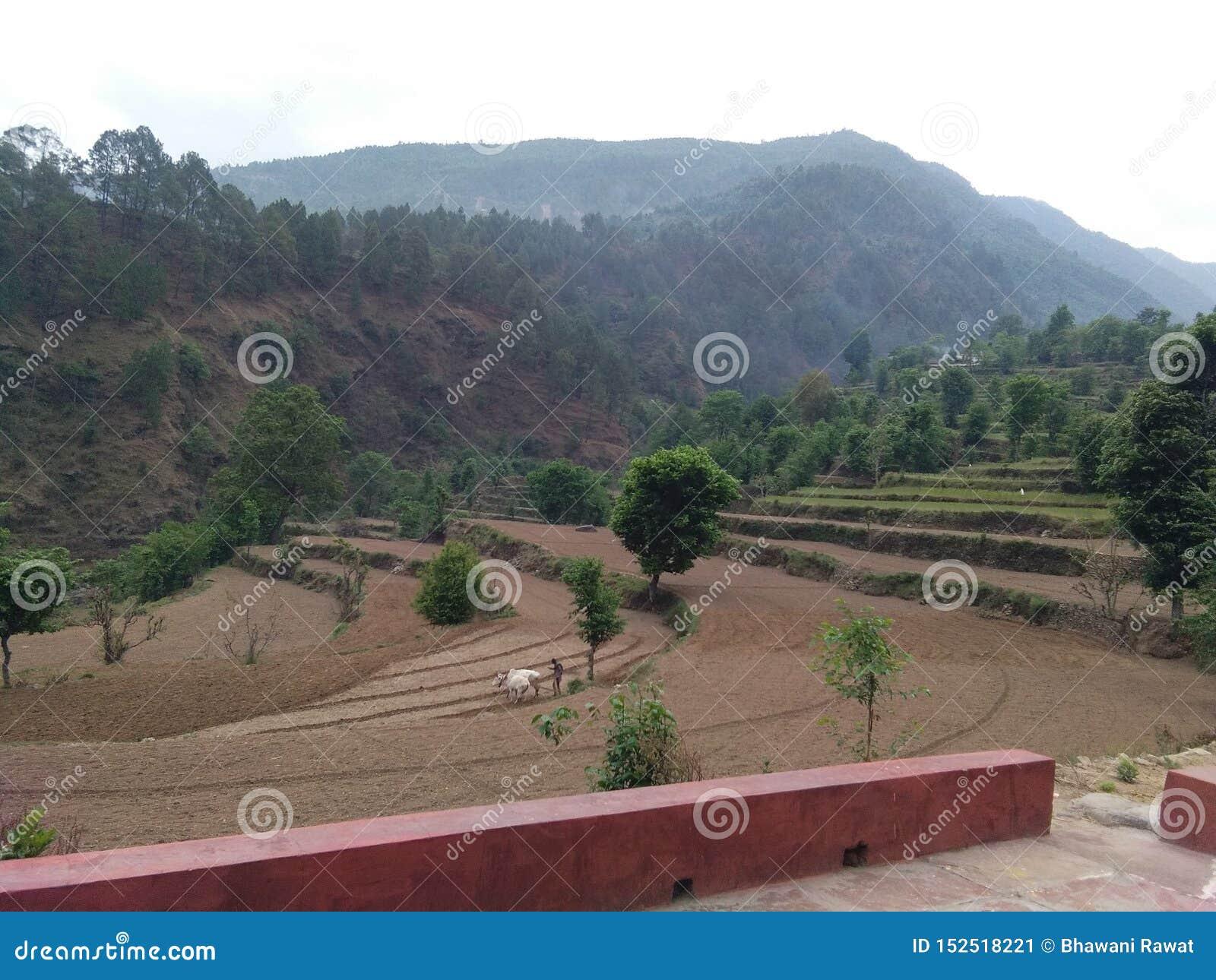 Villaggio che coltiva l amore della natura dei raccolti