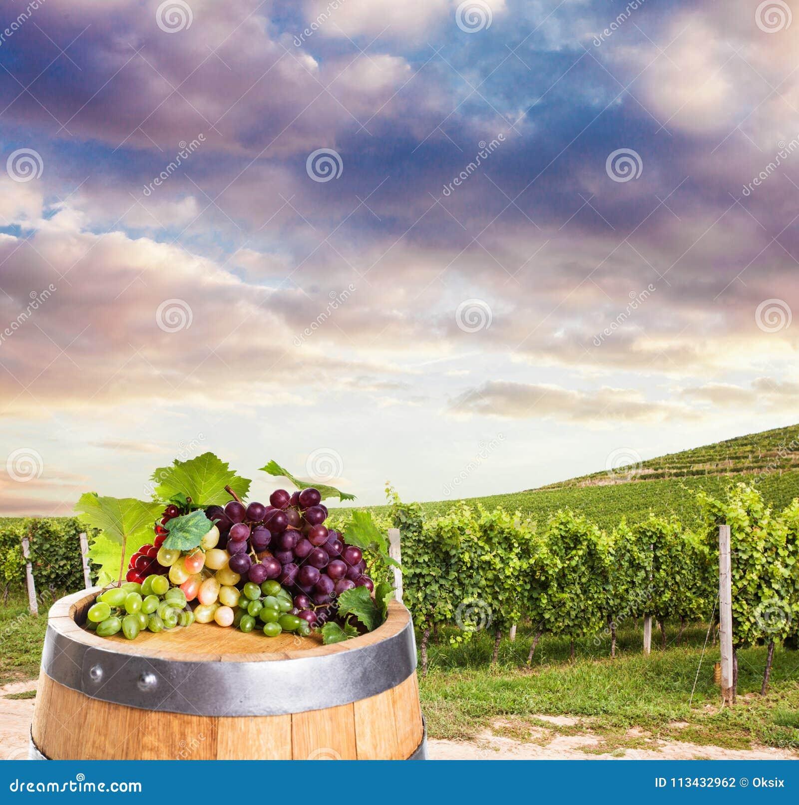 Vin blanc rouge