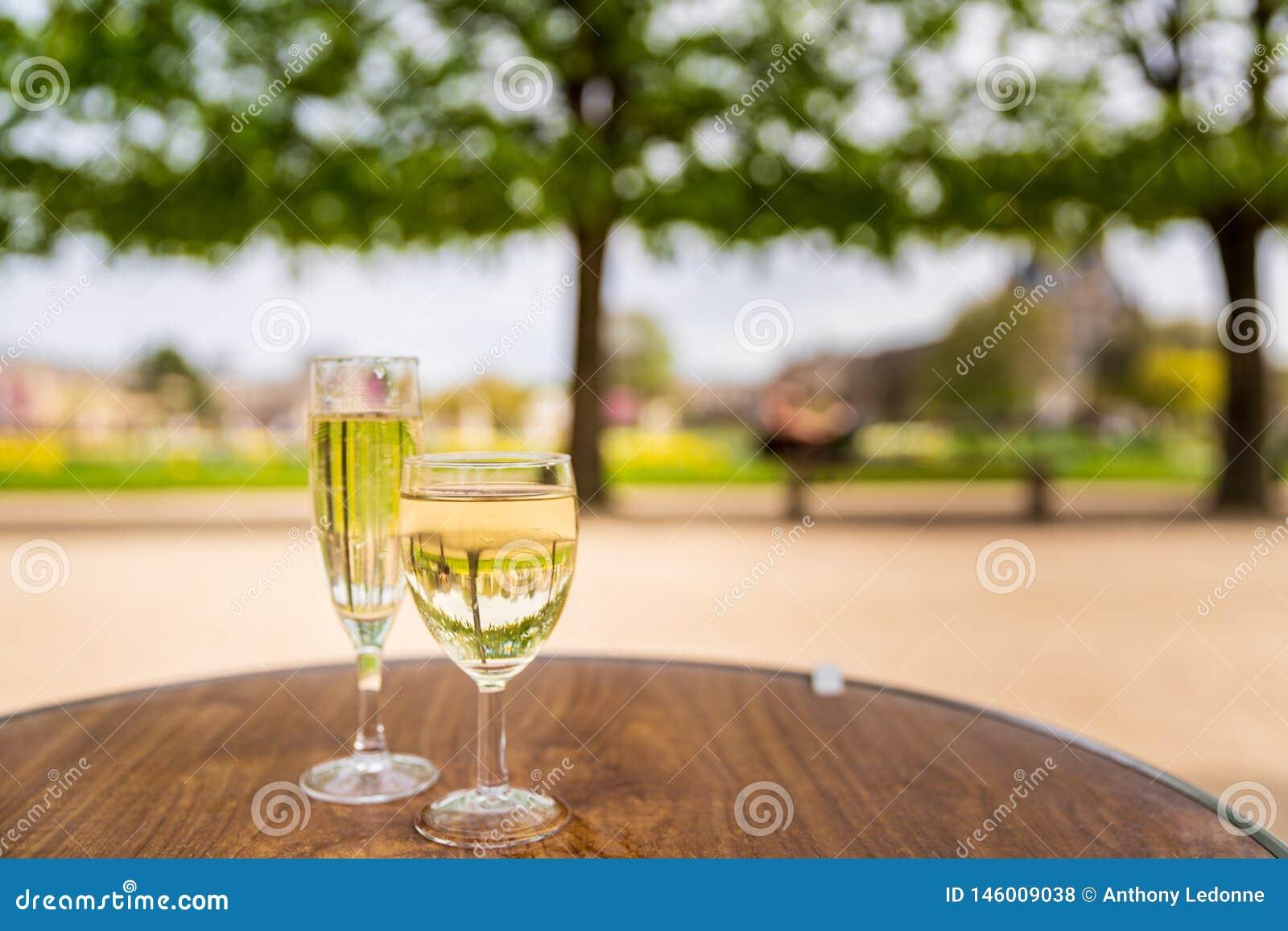 Vin i den Tuileries trädgården