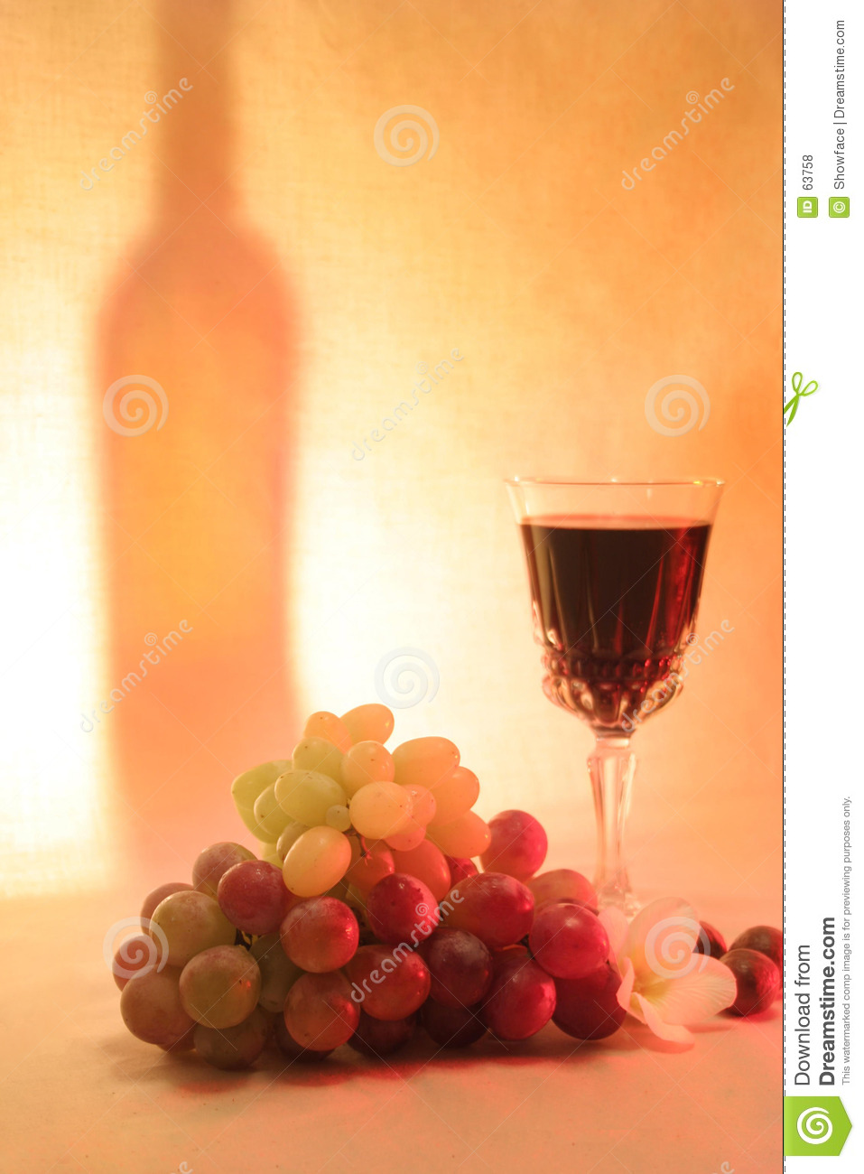 Vin, macadamia de fruits
