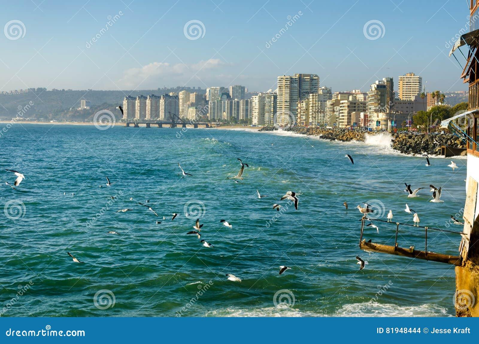 Vina del Mar-strand in Chili