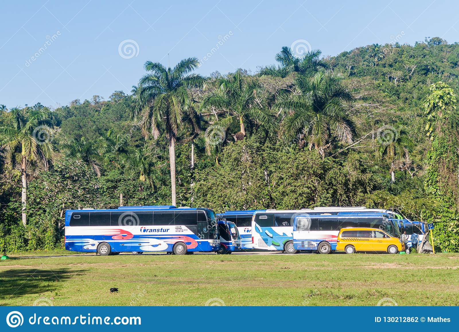 VINALES, CUBA - FEB 18, 2016: Tour buses at the entrance to Cueva del Indio cave in Vinales valley, Cub