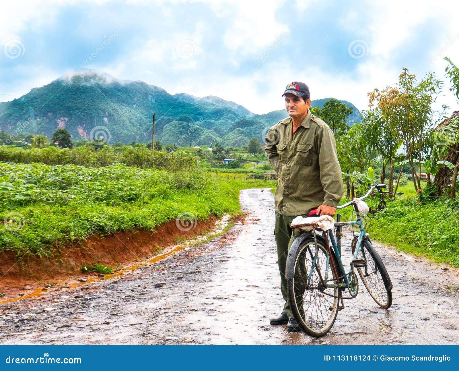 Vinales, Cuba Juin 2016 : Homme cubain avec la bicyclette, revenant des plantations de tabac, entourées par les champs verts