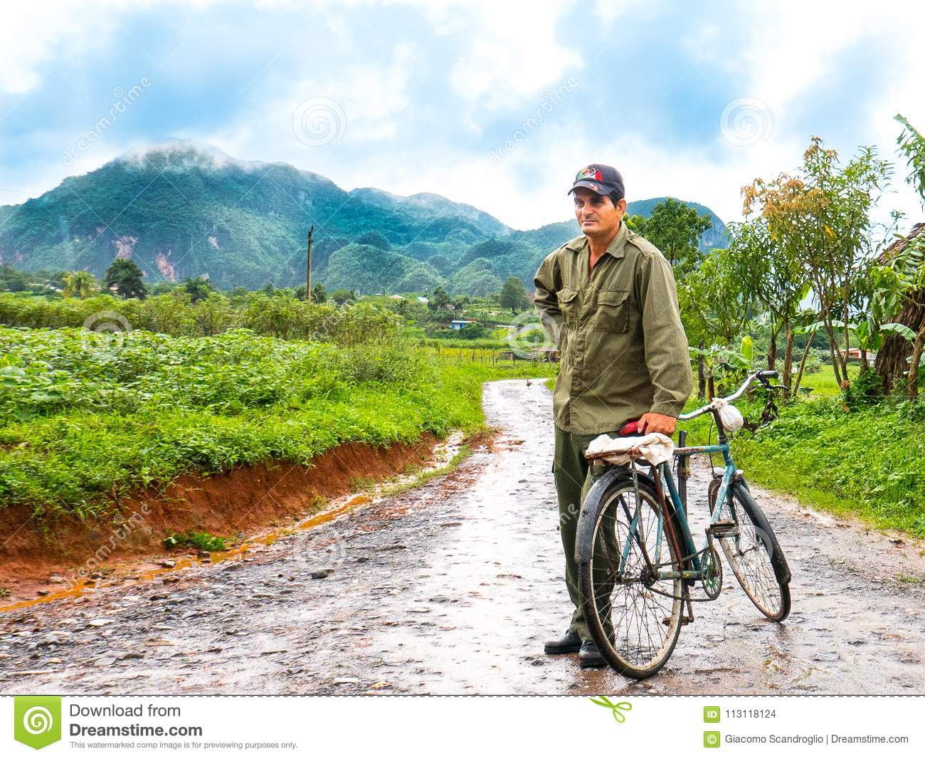 Vinales, Cuba. June 2016: Cuban man with bicycle, coming back from tobacco plantations, surrounded by green fields.