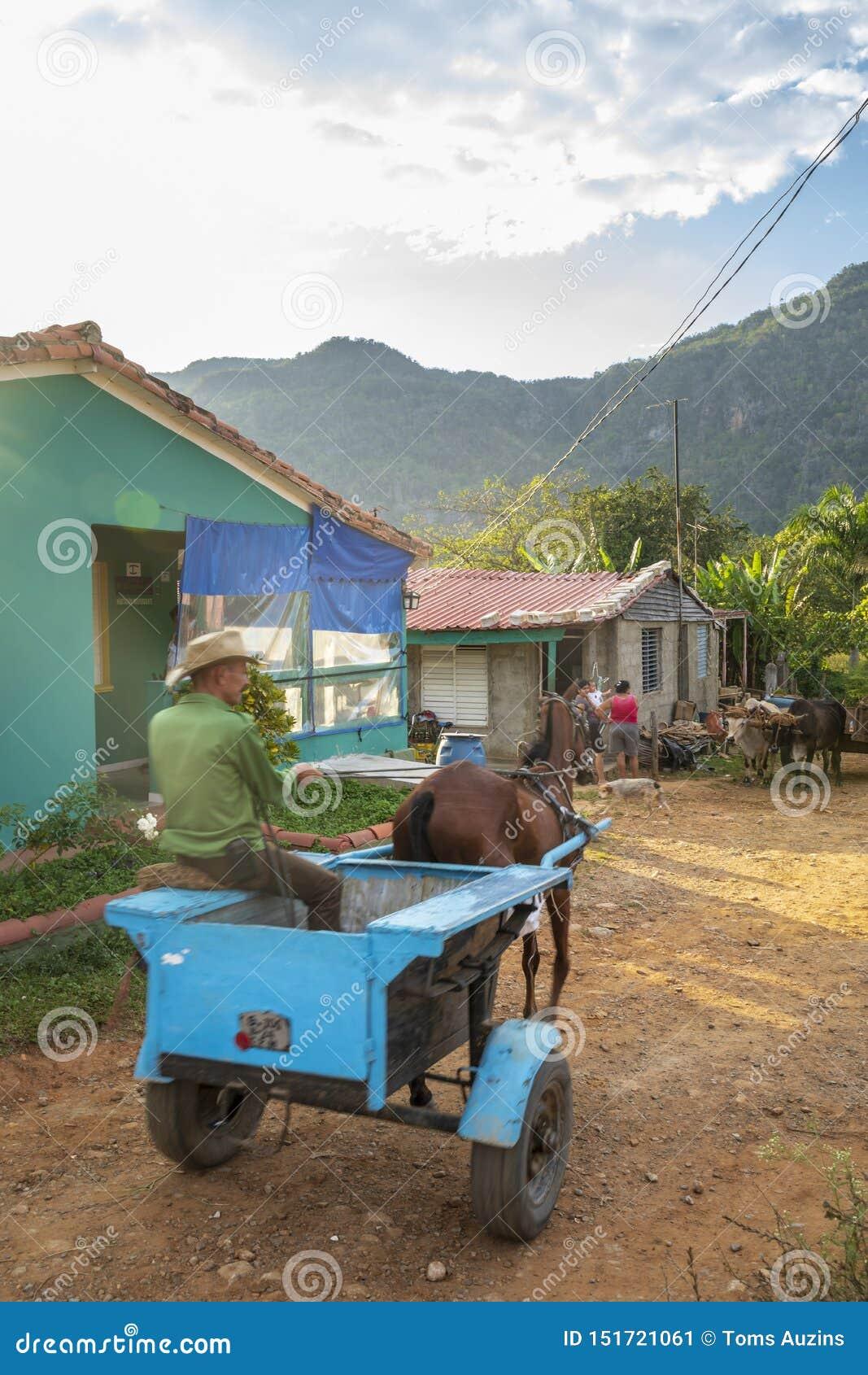 Farmer using horse chariot, UNESCO, Vinales, Pinar del Rio Province, Cuba, West Indies, Caribbean, Central America