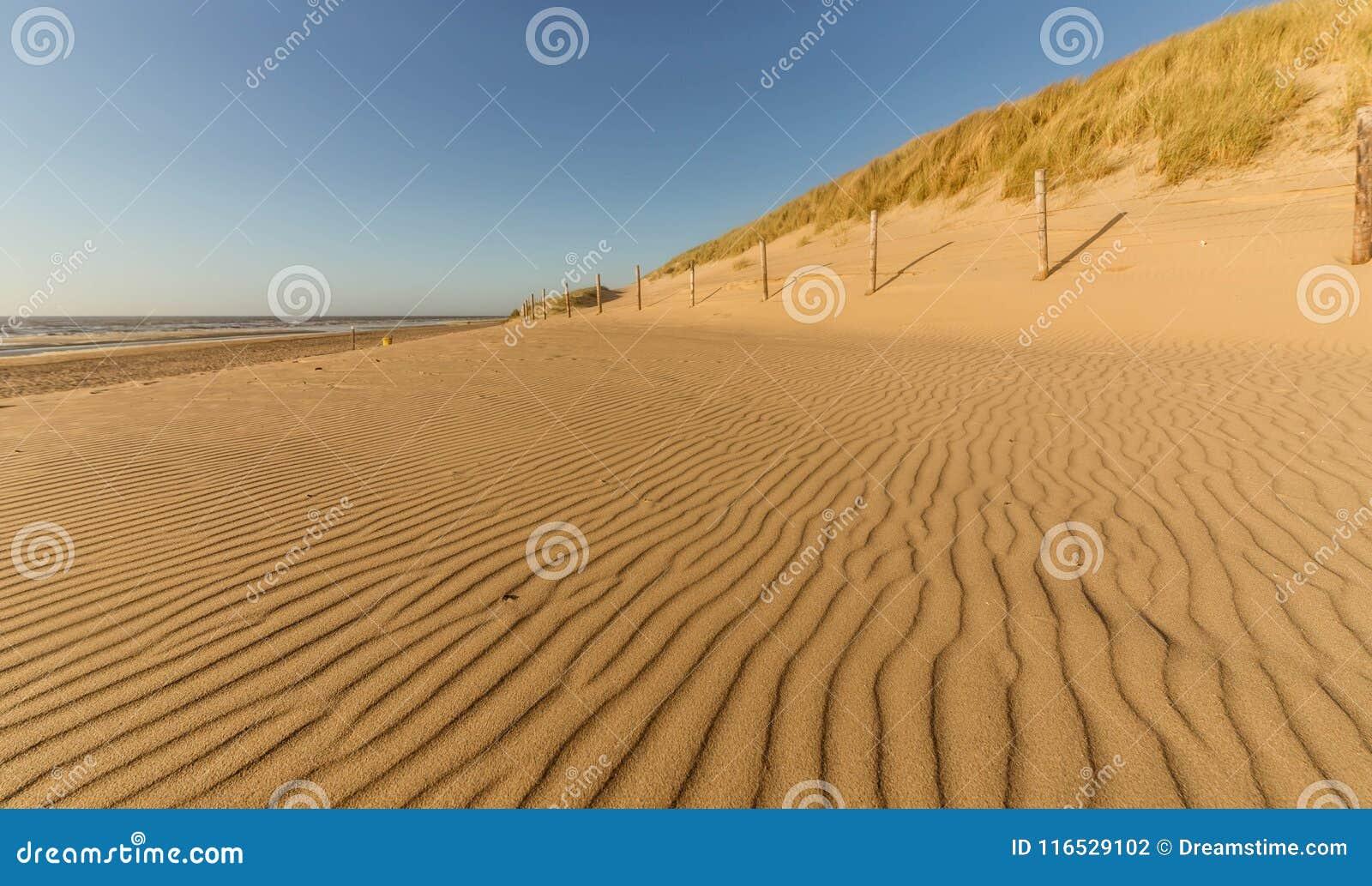 Vind-gjorda modeller på stranden