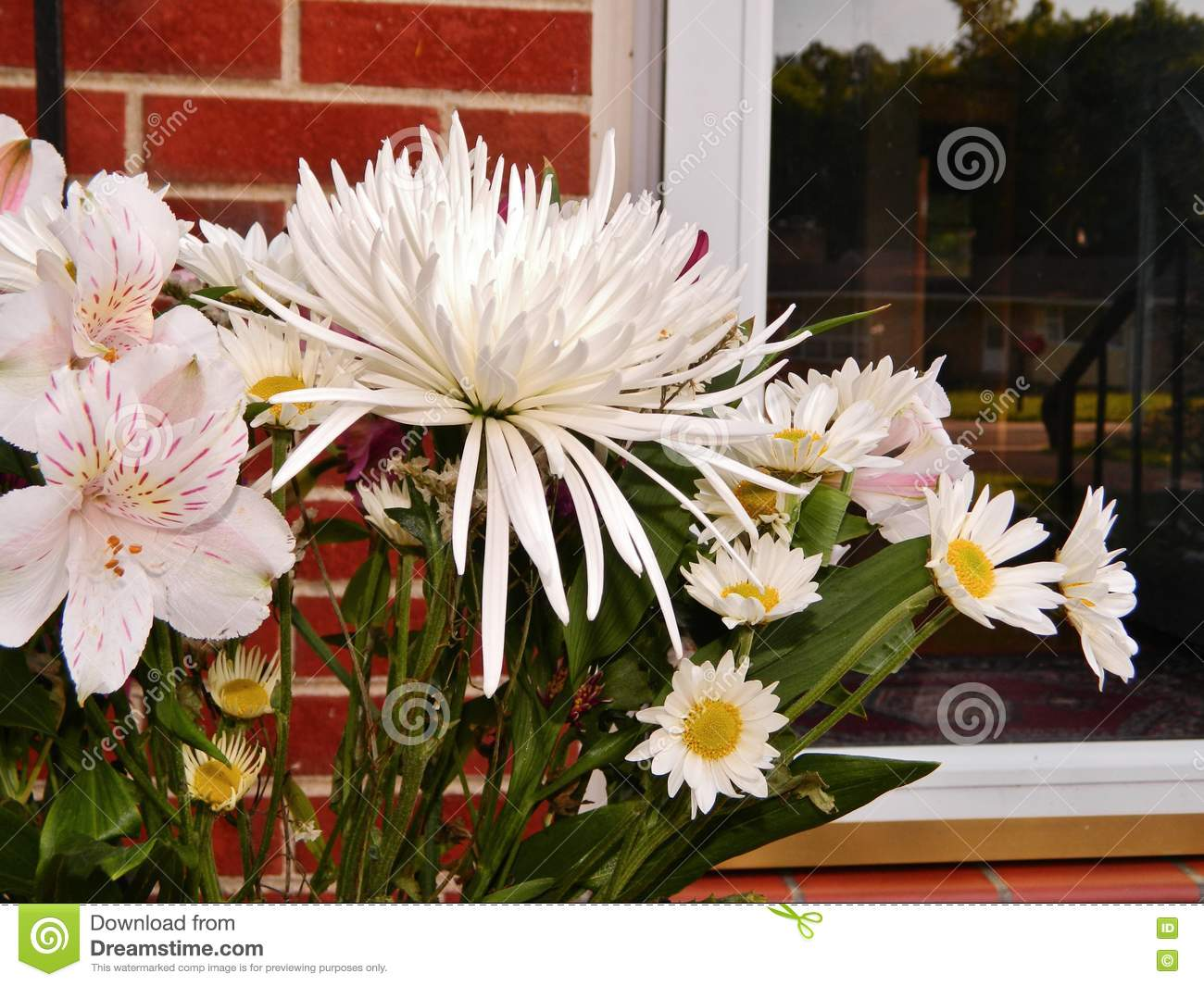 Bunch Of Long Stem White Flowers On Porch Stock Image Image Of