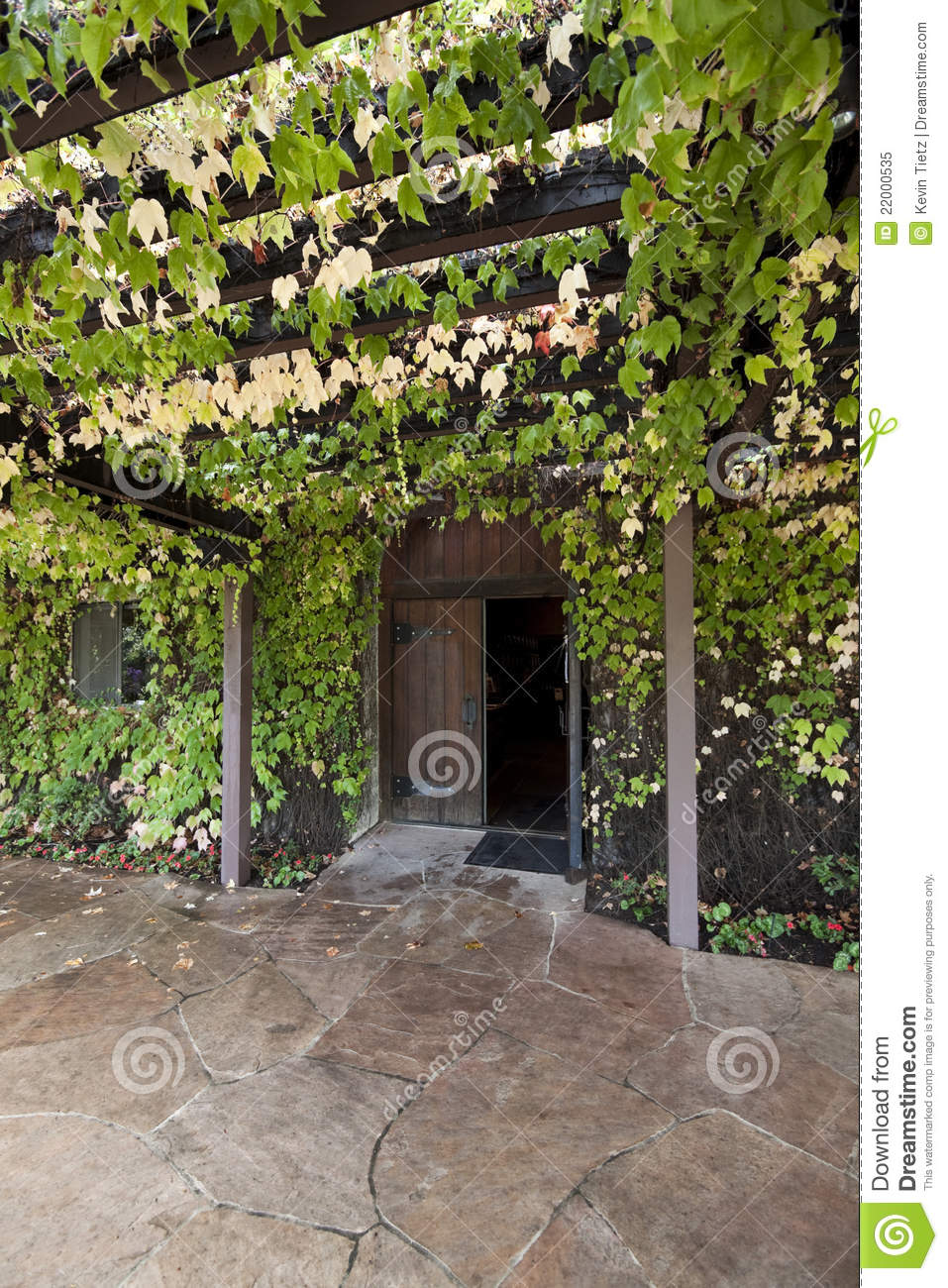 Vine Covered Trellis Stock Image Image Of Vine Path